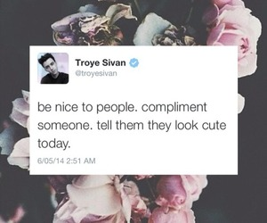 quote, troye sivan, and twitter image