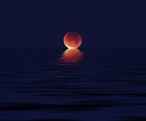 beautiful, moon, and night image