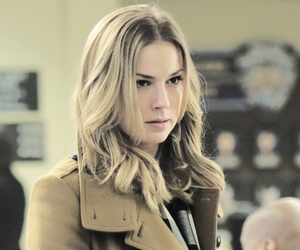 serie, emily vancamp, and emily thorne image