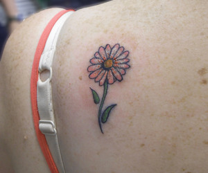 back, daisy, and flower image