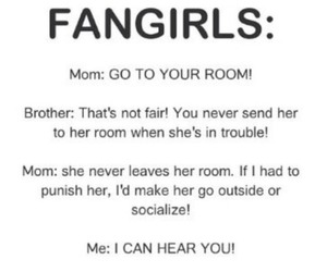 fangirl, funny, and fangirls image