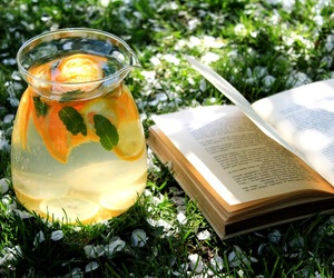 book, juice, and nature image