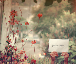 love, flowers, and loved image