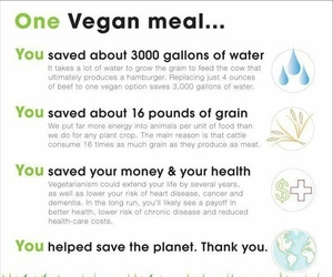 vegan and earth image