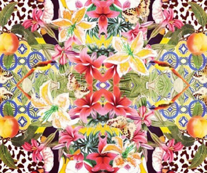 Collage, flowers, and pattern image
