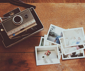 vintage, photo, and photography image
