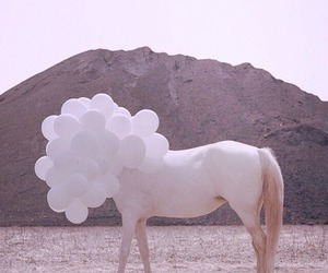 horse, balloons, and white image