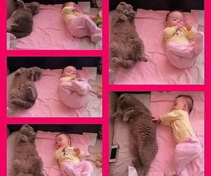 baby, cat, and funny image