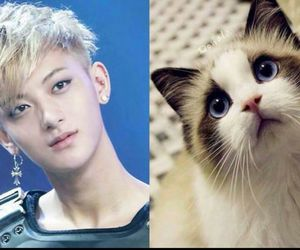 exo, tao, and exom image