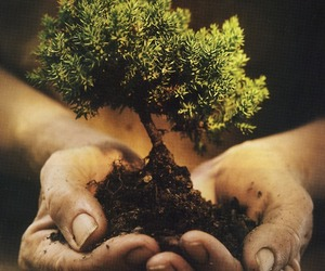 grow, mud, and hands image