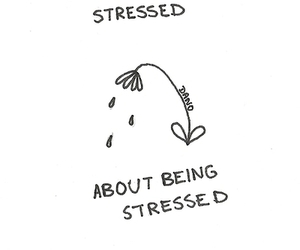 stressed, quotes, and flowers image