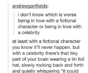 love, celebrity, and fangirl image