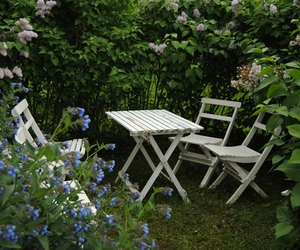 cozy, flowers, and garden image