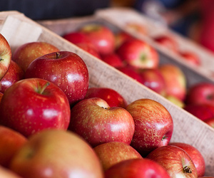 apple, fruit, and food image
