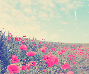 beauty, sky, and vintage image