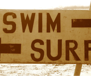 swim, summer, and surf image