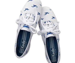 hollister and shoes image