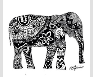 drawings, wallpaper, and elephant image