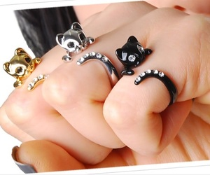 cat, jewellery, and kitty image