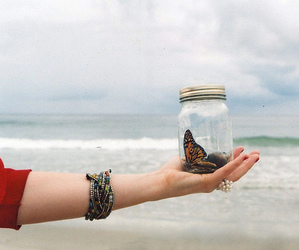 butterfly, beach, and vintage image