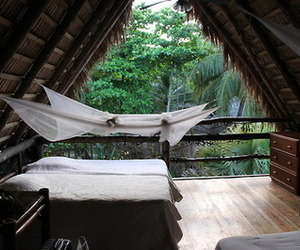 beautiful, tropical, and bedroom image