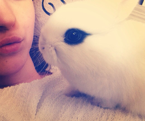 bunny, myself, and cute image