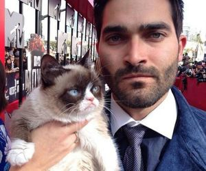 teen wolf, tyler hoechlin, and cat image