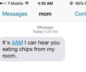 funny, chips, and mom image