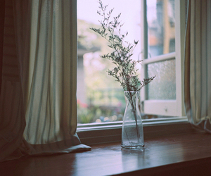 curtains, flower, and home image