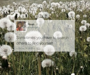 quotes, self, and tweets image