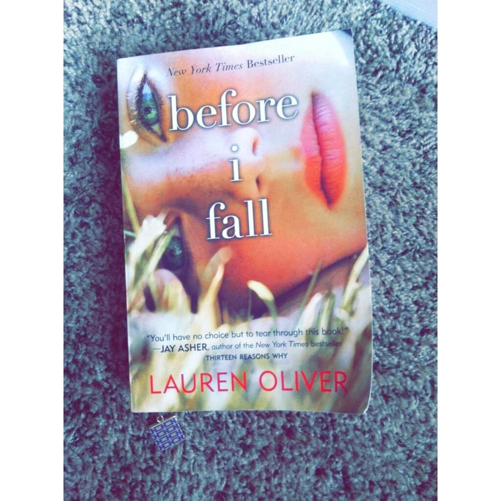 book and before i fall image