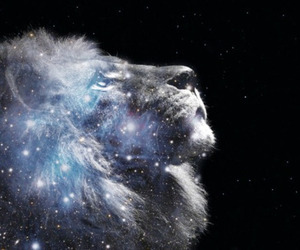 brave, lion, and follow image