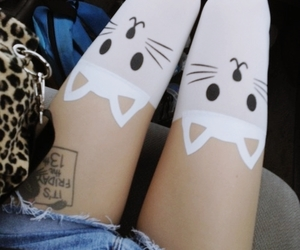 cat, legs, and kitty image