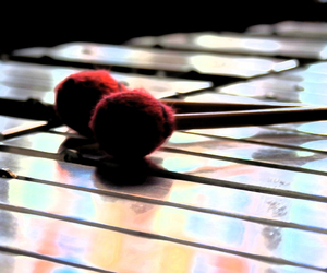 heart, life, and mallets image