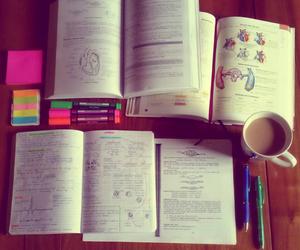 study, school, and study hard image