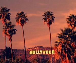 hollywood and california image