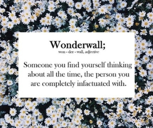 love, wonderwall, and flowers image