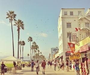 la, Venice beach, and los angeles image
