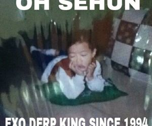 derp, exo, and maknae image