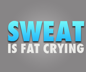 sweat, fat, and fitness image