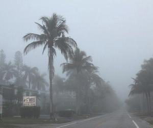 grunge, pale, and fog image