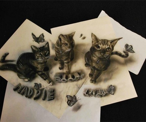 cat, drawing, and 3d image
