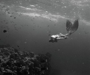 mermaid, black and white, and ocean image