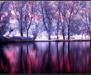 purple, magical, and pink image