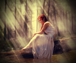 beautiful, fairy, and forest image