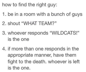 wildcats, high school musical, and funny image