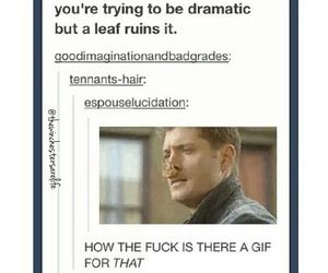 supernatural and funny image