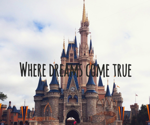 castle, disney world, and dreams image