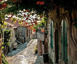flowers, street, and france image