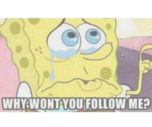 follow, spongebob squarepants, and reaction picture image